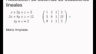 Umh0966 2013-14 Lec001.3 Álgebra Lineal. Sistemas De Ecuaciones. Eliminación En Matrices, Pivotes