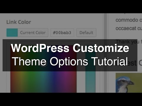 WordPress Customize (Color Picker) Tutorial