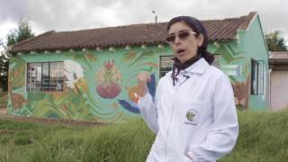 Documental Cuidado de fauna silvestre – Tu casa será su cárcel 1