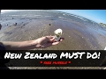 Download Video MYGF_DIARY | Catching mussels at Maketu beach - New Zealand | video + blog | 006
