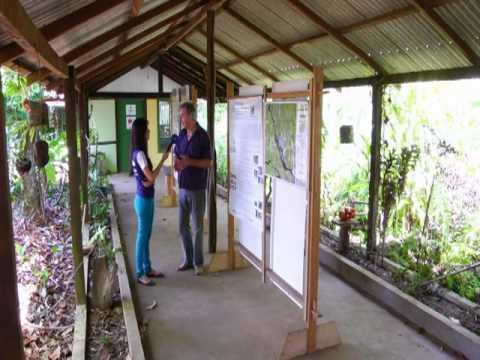 Artesanato amazônico em Novo Airão