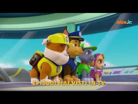 Preview Trailer Paw Patrol, trailer ufficiale