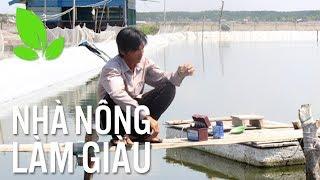 Nhà nông làm giàu | Cần Giờ: Bỏ muối nuôi tôm, dân nâng cao thu nhập