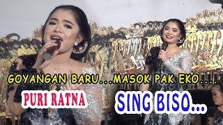Video GOYANG BARU  SING BISO.... PURI RATNA..  Masok Pak Ekoo..... MP3, 3GP, MP4, WEBM, AVI, FLV September 2019