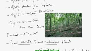 This video lecture from Some Major Ecosystems (F.Sc. second year Biology) covers some major ecosystems of Pakistan and details about temperate deciduous forests, coniferous alpine and boreal forest in Pakistan. Find more e-learning material and educational video lectures in Urdu at maktab.pk. These videos are free to use for promotional and commercial purpose by keeping the credits to Maktab.