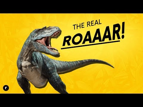What Did Dinosaurs Really Sound Like?