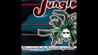 Dj Soul Slinger Ethiopia(believers Mix)
