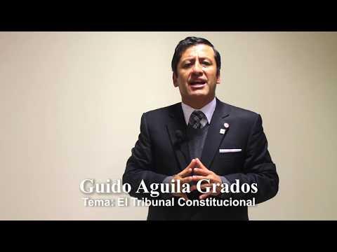 Programa 24 - El Tribunal Constitucional - Tribuna Constitucional - Guido Aguila