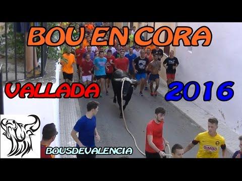 BOUS AL CARRER - VALLADA (V) 2016 - TORO EN CUERDA EN UN BUEN PUEBLO - 1080 FULL HD