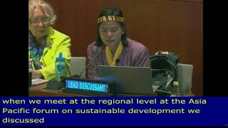 Alma Sinumlagat as Lead Discussant on Lessons from the regions review the HLPF 2018: UN Web TV