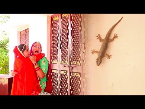 सास बहु डरी छिपकली से - Saas Bahu New Comedy | राजस्थानी कॉमेडी | Marwadi Comedy | New Comedy Video