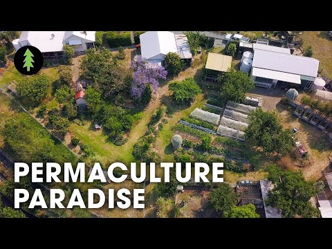 Incredibly Abundant 1-Acre Permaculture Homestead Tour – Limestone Permaculture Farm Revisit