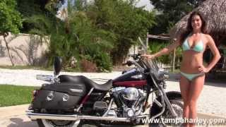 10. 2005 Harley Davidson Road King Classic - Used Motorcycles for sale in Jacksonville FL