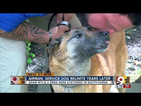 Airman, Service Dog Reunite Years Later