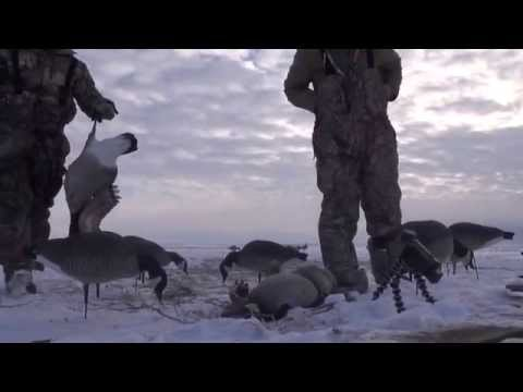 Run2Gun TV Episode 8 Late Season Goose Hunt
