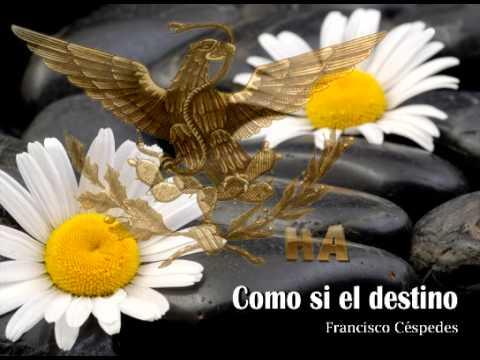 Así es el destino - Thalía