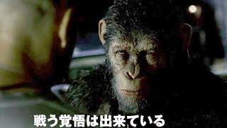 映画『猿の惑星:聖戦記(グレート・ウォー)』予告編