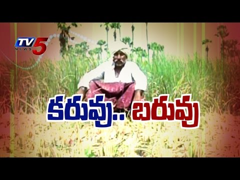 Severe Drought Conditions in Telangana | Farmers Demands To Develop Drought Plans : TV5 News