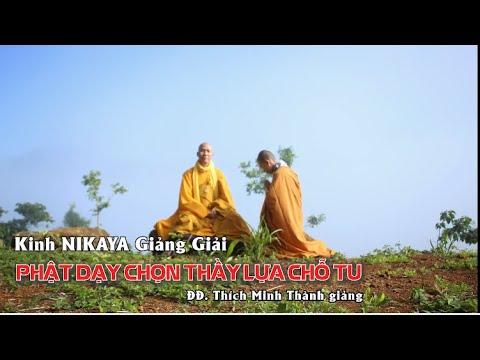 Kinh NIKAYA Giảng Giải - Phật Dạy Chọn Thầy Lựa Chỗ Tu