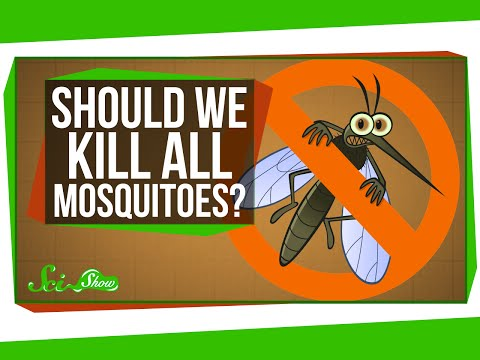 What If We Killed All the Mosquitoes