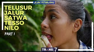 Video JEJAK PETUALANG | TELUSUR JALUR SATWA TESSO NILO (20/02/18) 1-3 MP3, 3GP, MP4, WEBM, AVI, FLV November 2018