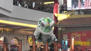 Living World International Lion Dance Championship - Ching Lung Bekasi Indonesia