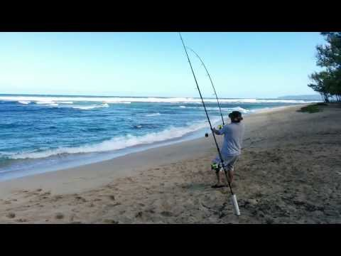 Surf Fishing North Shore of Oahu – Jan 2014