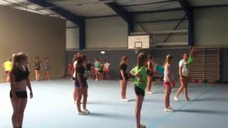 Krefeld Germany  City new picture : Dolphins Krefeld Germany Tumbling Show