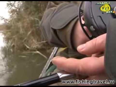 уроки мастерства ловли сома