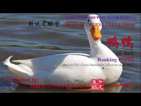 Any hidden meaning for 鸭鴨 yā duck - 1828 ? Adult Only - Origin of Chinese Characters