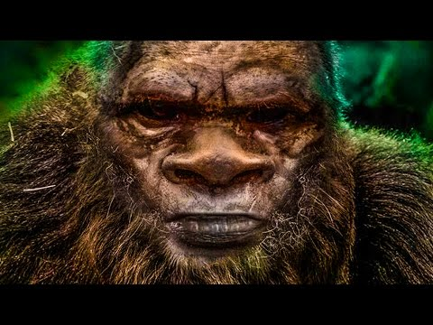 ►Finding Bigfoot PC Gameplay◄ Finding Bigfoot Survival Horror Game w/ a Special Guest!