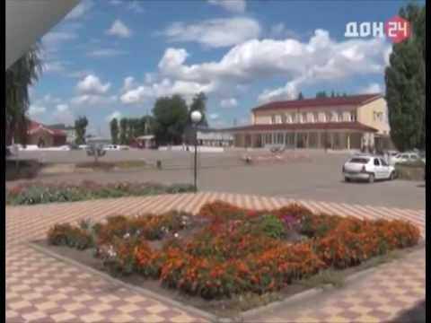 Борьба с очагами дикорастущей конопли в Ростовской области