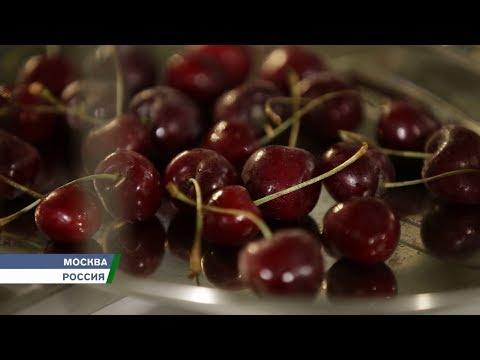 ВРоссии разработана революционная технология акустической заморозки продуктов.