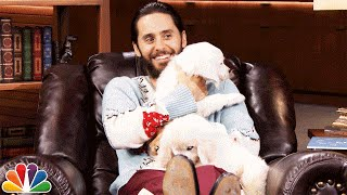 Video Pup Quiz with Jared Leto MP3, 3GP, MP4, WEBM, AVI, FLV April 2018