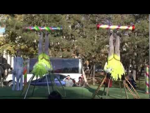 Цирковое шоу (часть 2)