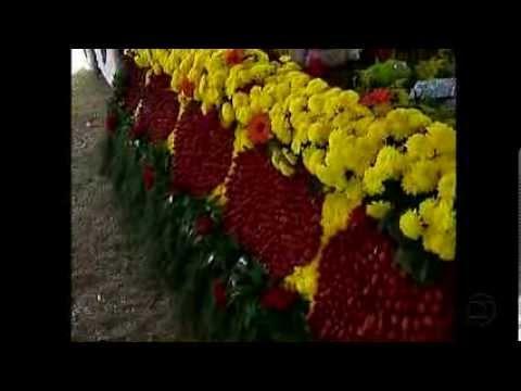 Festa do morango, rosas e flores em Alfredo Vasconcelos