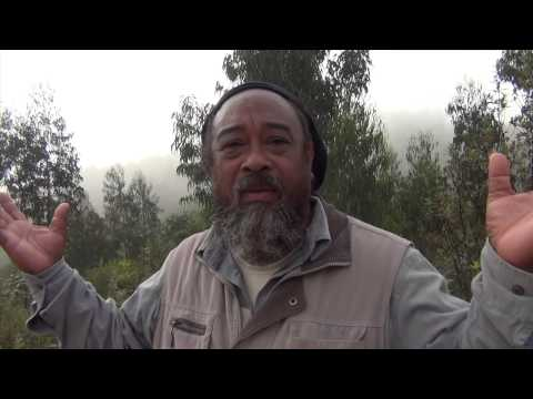 "Mooji Video: ""Truth"" is Not Logical"
