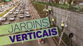 A instalação de jardins verticais na Avenida 23 de Maio, em São Paulo já está quase completa. No total, serão mais de 10 mil m² de vegetação que vão formar o...