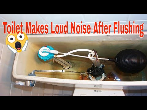 Toilet Makes Loud Noise After Flushing