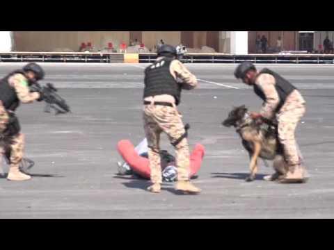 تمرين أمن الخليج العربي 9-11-2016