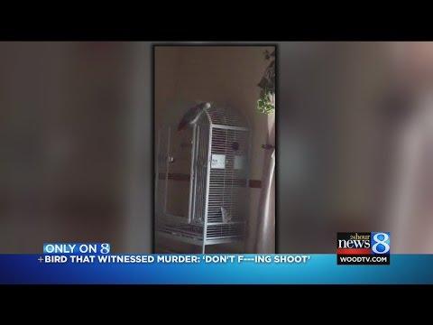 這間家「男主人遭槍殺,女主人受槍傷」卻找不到兇手,結果家裡的鸚鵡一開口警方就傻住了…?