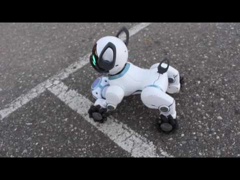 Wowwee Chip Robot Dog Blogger Review