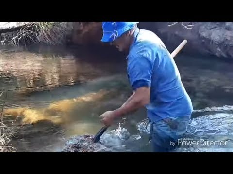 Homem encontra um rio CHEIO de PLATINA. Man finds a river FULL OF PLATINUM.
