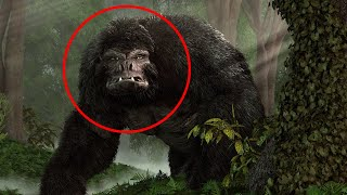 Craziest Cryptids That Resemble Bigfoot by Epic Wildlife