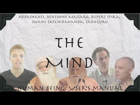 Human Being: User's Manual – You Are Not the Mind