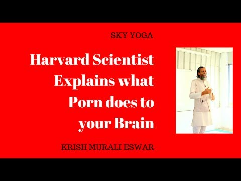 Video Harvard Scientist Explains what Porn does to your Brain download in MP3, 3GP, MP4, WEBM, AVI, FLV January 2017
