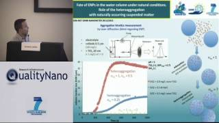 Assessing the heteroaggregation of manufactured nanoparticles