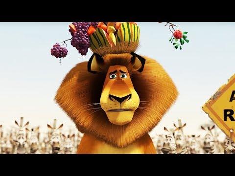 DreamWorks Madagascar | The Watering Hole Scene | Madagascar : Escape 2 Africa | Kids Movies