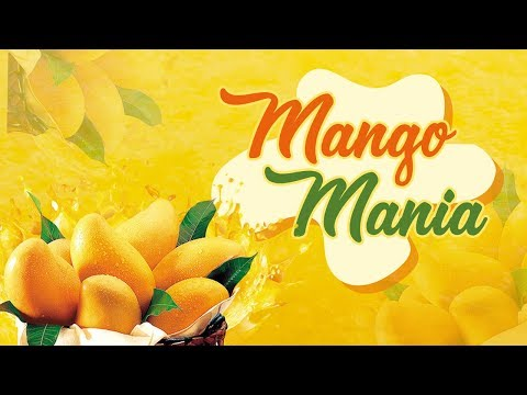 BEST Of Mango Recipes – Summer Special Recipes – Mango Mania – MANGO RECIPES