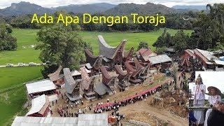 Video Demi Adat dan kedua Orang Tuaku di Toraja MP3, 3GP, MP4, WEBM, AVI, FLV Juni 2019